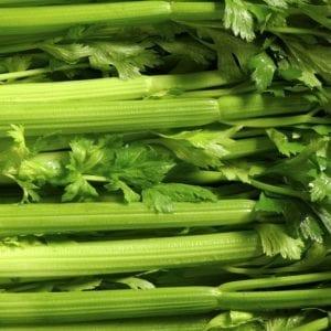 stap celera